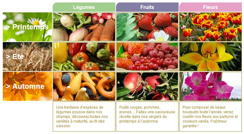 蔬果园-农场的季节产品