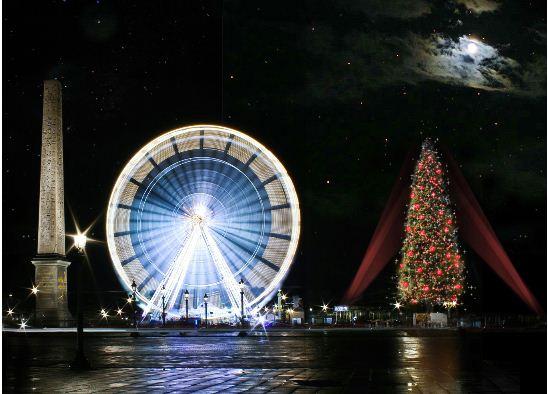 欧洲最高的圣诞树- concorde