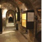 周末的葡萄酒扫盲班之旅,巴黎博物馆可以喝到免费的葡萄酒