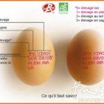 你知道法国鸡蛋上的红戳都代表什么吗?看看你平常吃鸡蛋