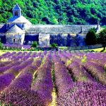 法国普罗旺斯风情